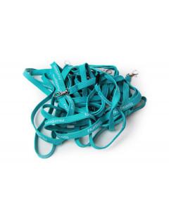 Logonackband turkosblå, 10-pack